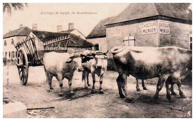 Cartes Postales Anciennes 03 allier Charroux