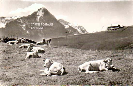 Cartes Postales Anciennes  meurthe et moselle  Bouzanville