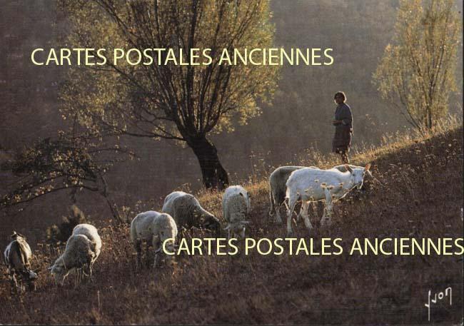 Cartes Postales Anciennes Métier