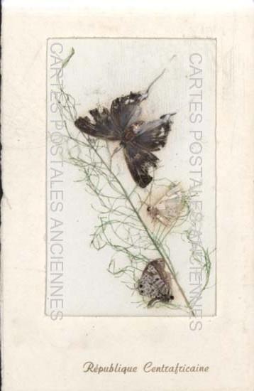 Cartes postales anciennes fantaisie Fleurs sèche