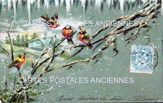 Old postcards fantasy Oiseaux