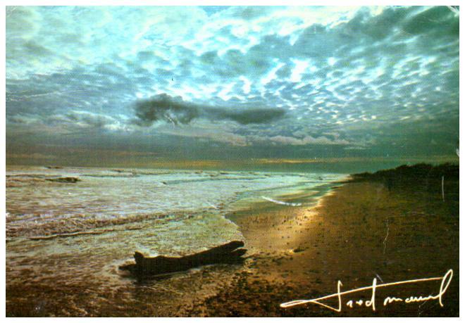 Old postcards landscape Paysage mer