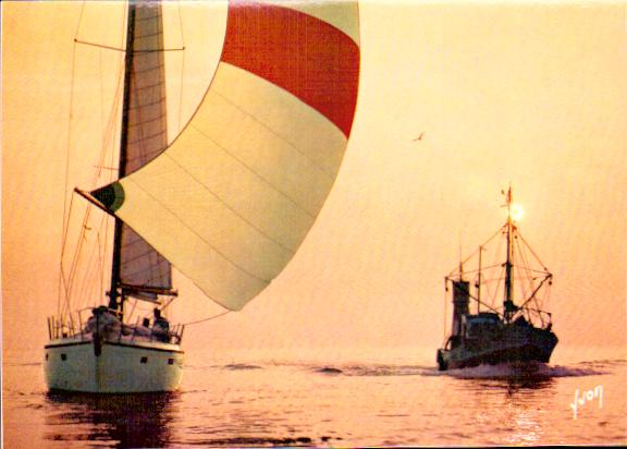Old postcards boat sea Voiliers