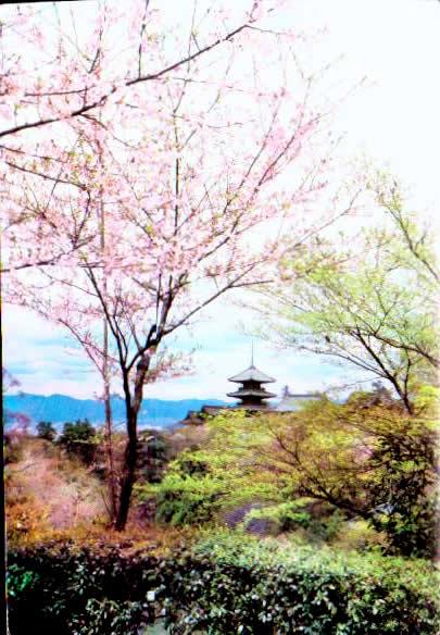 Cartes Postales Anciennes France Monde Japon Tokyo