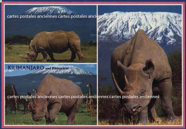 Cartes Postales Anciennes Monde Kenya