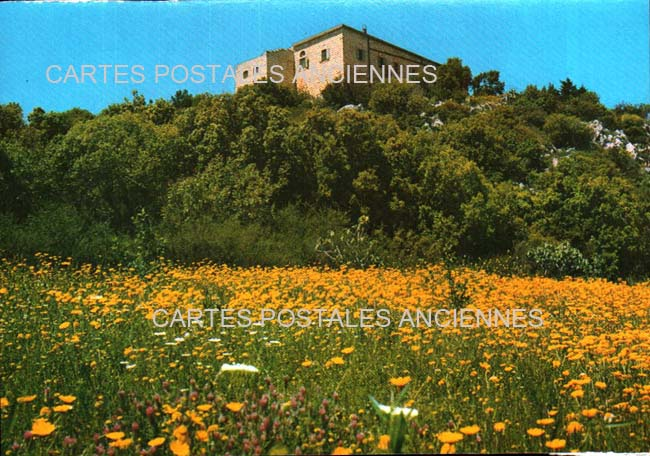 Cartes Postales Anciennes Monde Israël Haïfa
