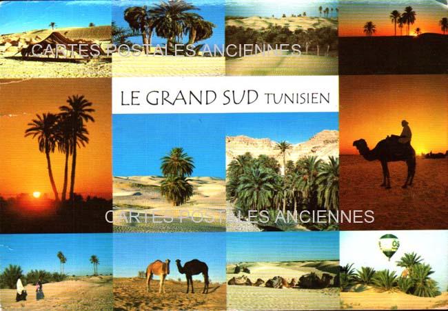 Monde Tunisia Tunisie scènes et  types tradition
