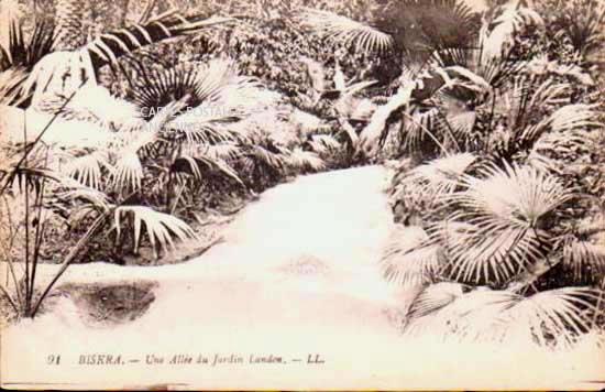 Cartes Postales Anciennes France Monde Algerie Biskra