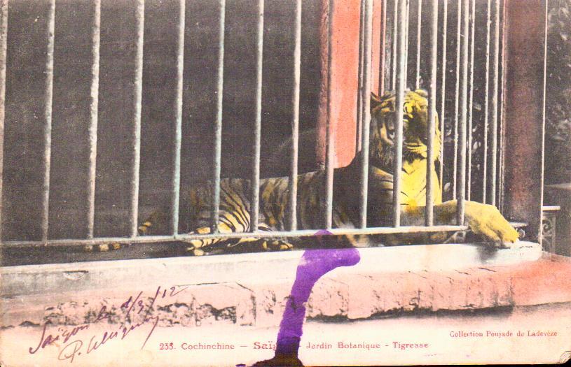 Cartes Postales Anciennes France Monde Indochine