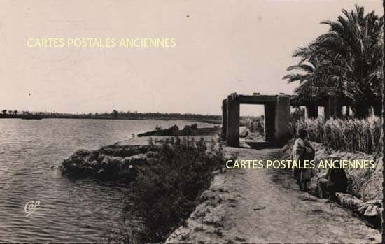 Cartes Postales Anciennes France Monde Algérie Temacine