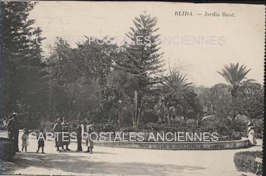 Cartes Postales Anciennes Monde Algérie Blida algérie