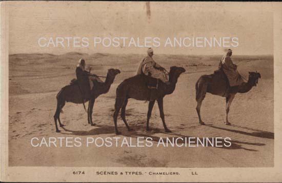 Monde Postal stamps algeria Algérie scènes et  types tradition