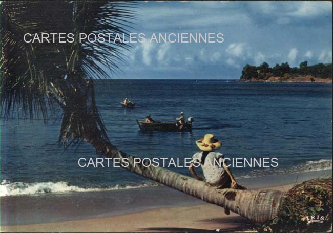 Guadeloupe. Grande anse